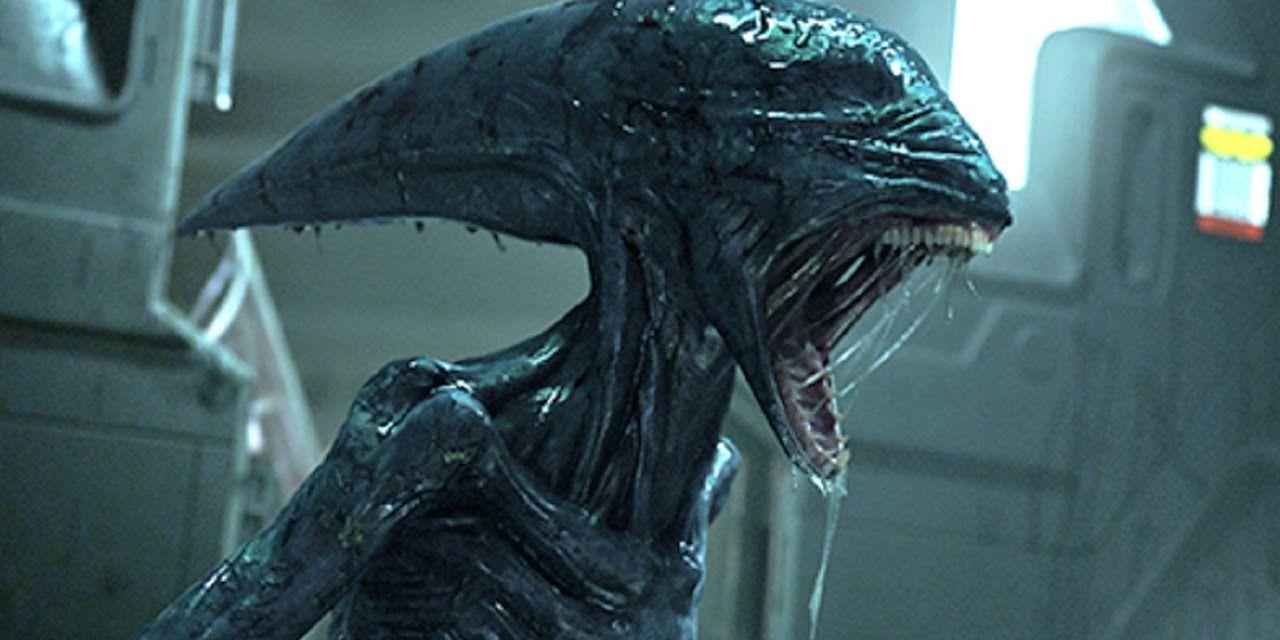 Alien: Covenant Wallpaper