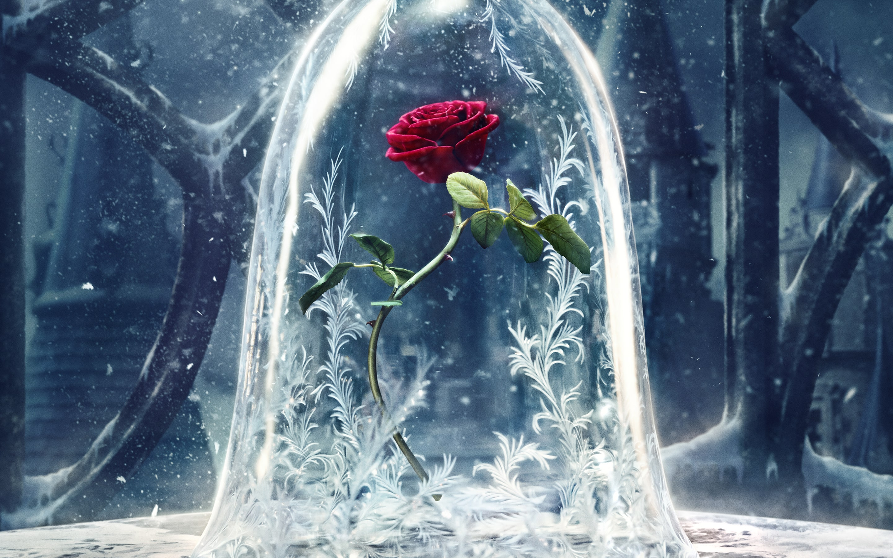 beauty and the beast hd wallpapers 7wallpapers net beauty and the beast hd wallpapers