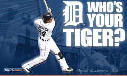 Detroit Tigers for mobile