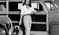 Dorothy Malone Wallpaper