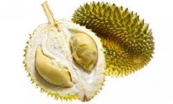 Durian Wallpaper