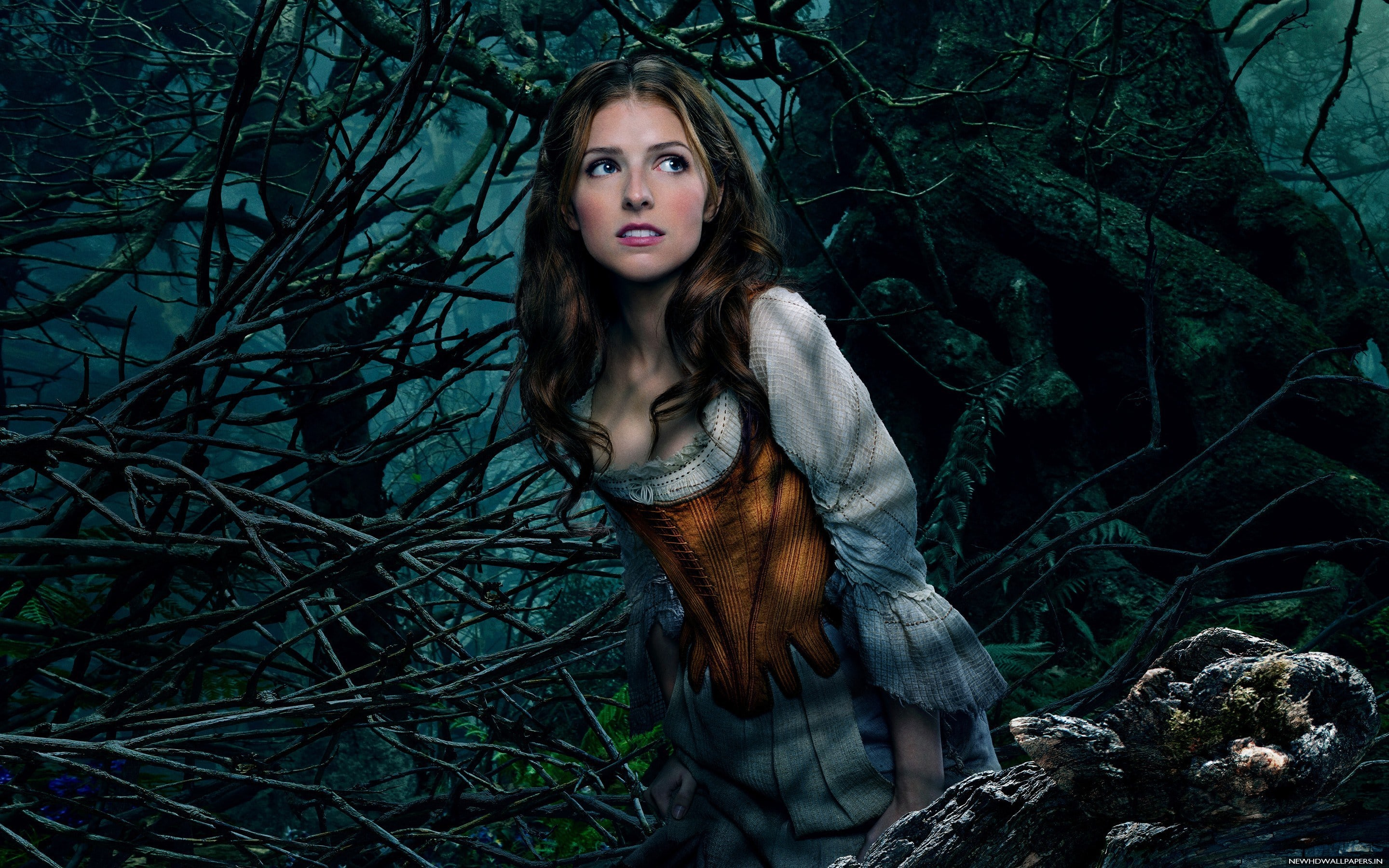 Into The Woods Wallpaper