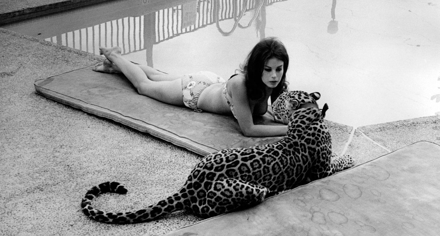 Lana Wood Pictures