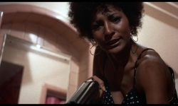 Pam Grier Wallpaper