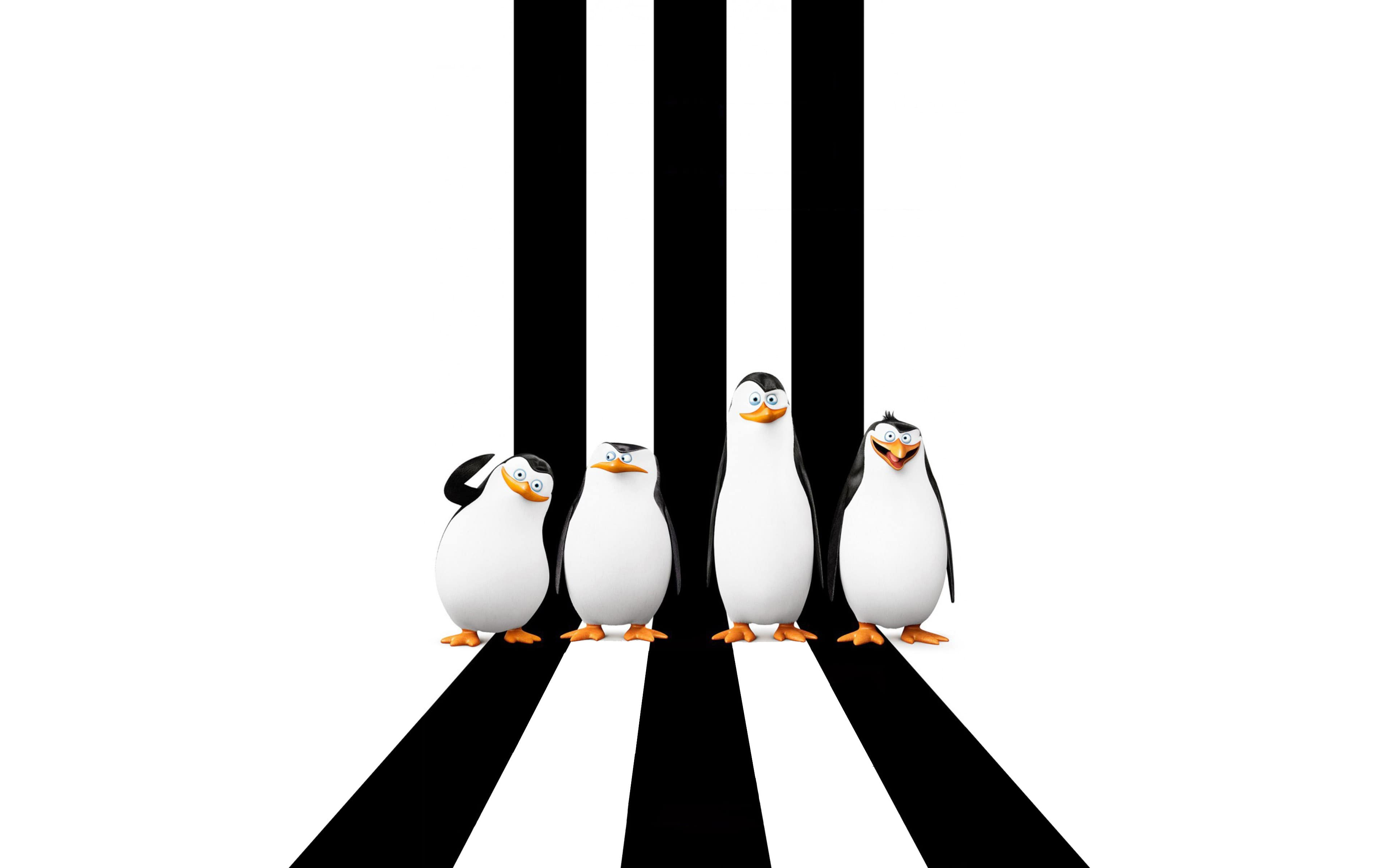 penguins of madagascar hd desktop wallpapers | 7wallpapers