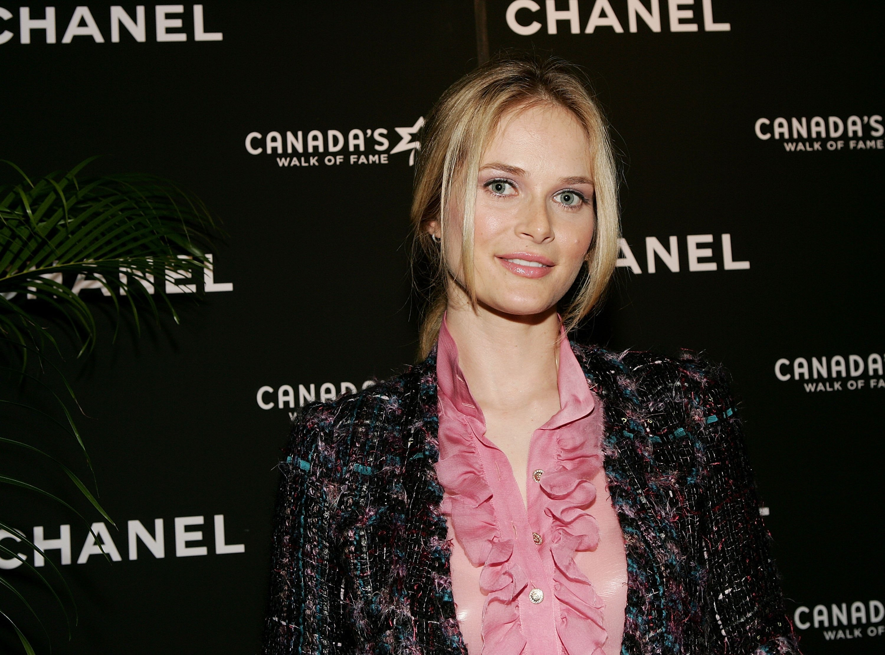 Rachel Blanchard Wallpaper