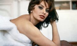 Sophia Loren Wallpaper
