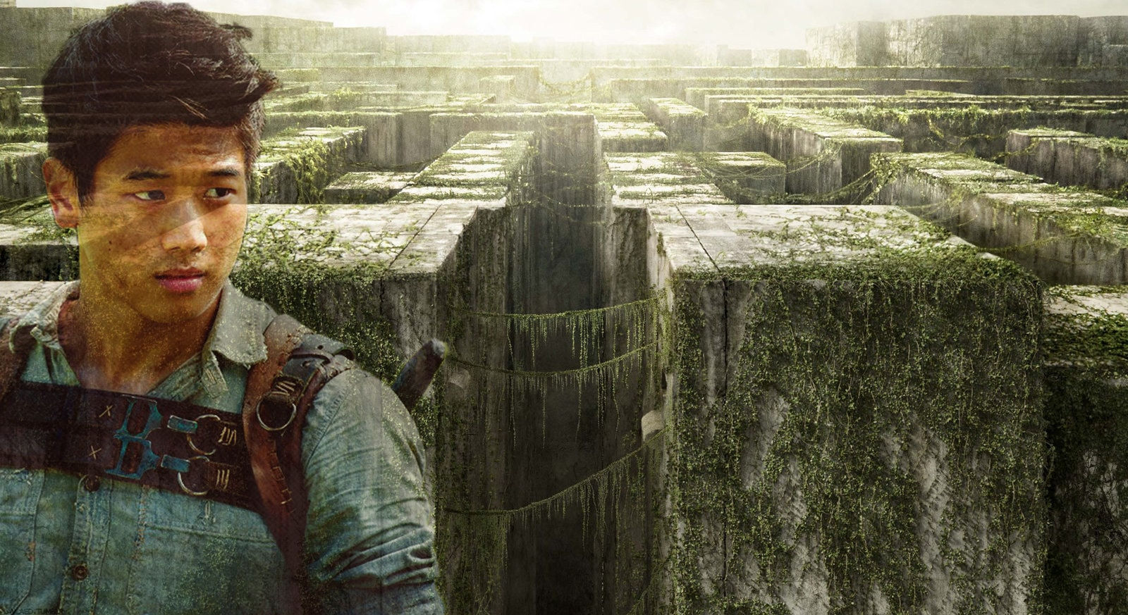 The Maze Runner Wallpaper