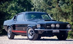 1967 Shelby GT500 HD pictures
