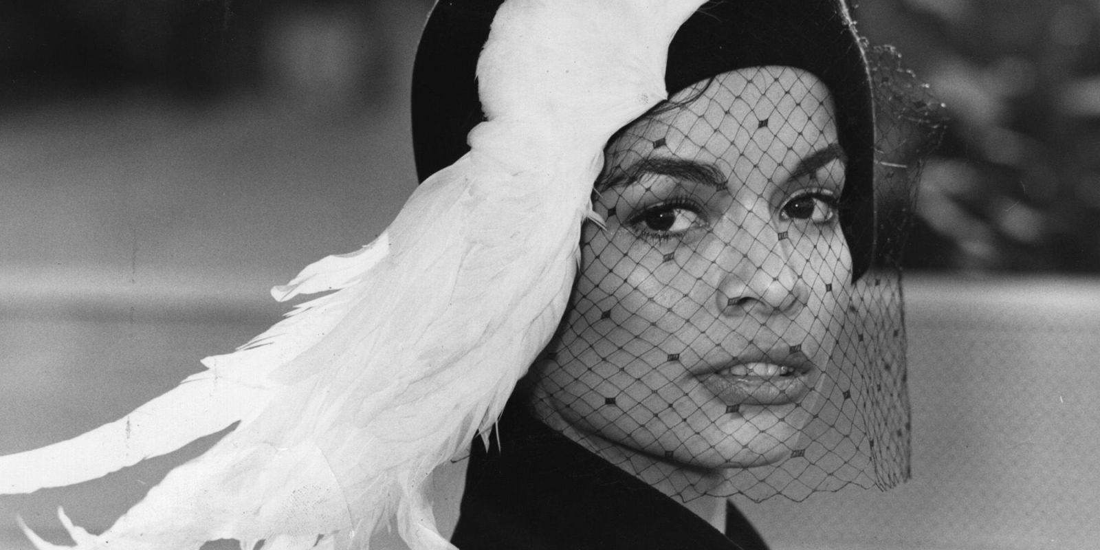 Bianca Jagger HD pictures