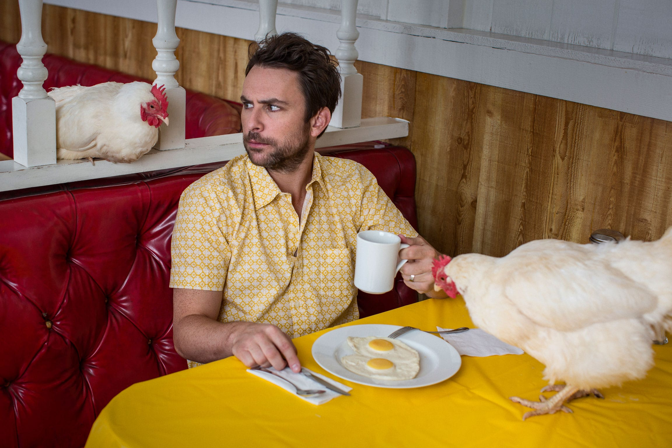 Charlie Day HD pictures