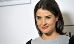 Cobie Smulders HD pictures