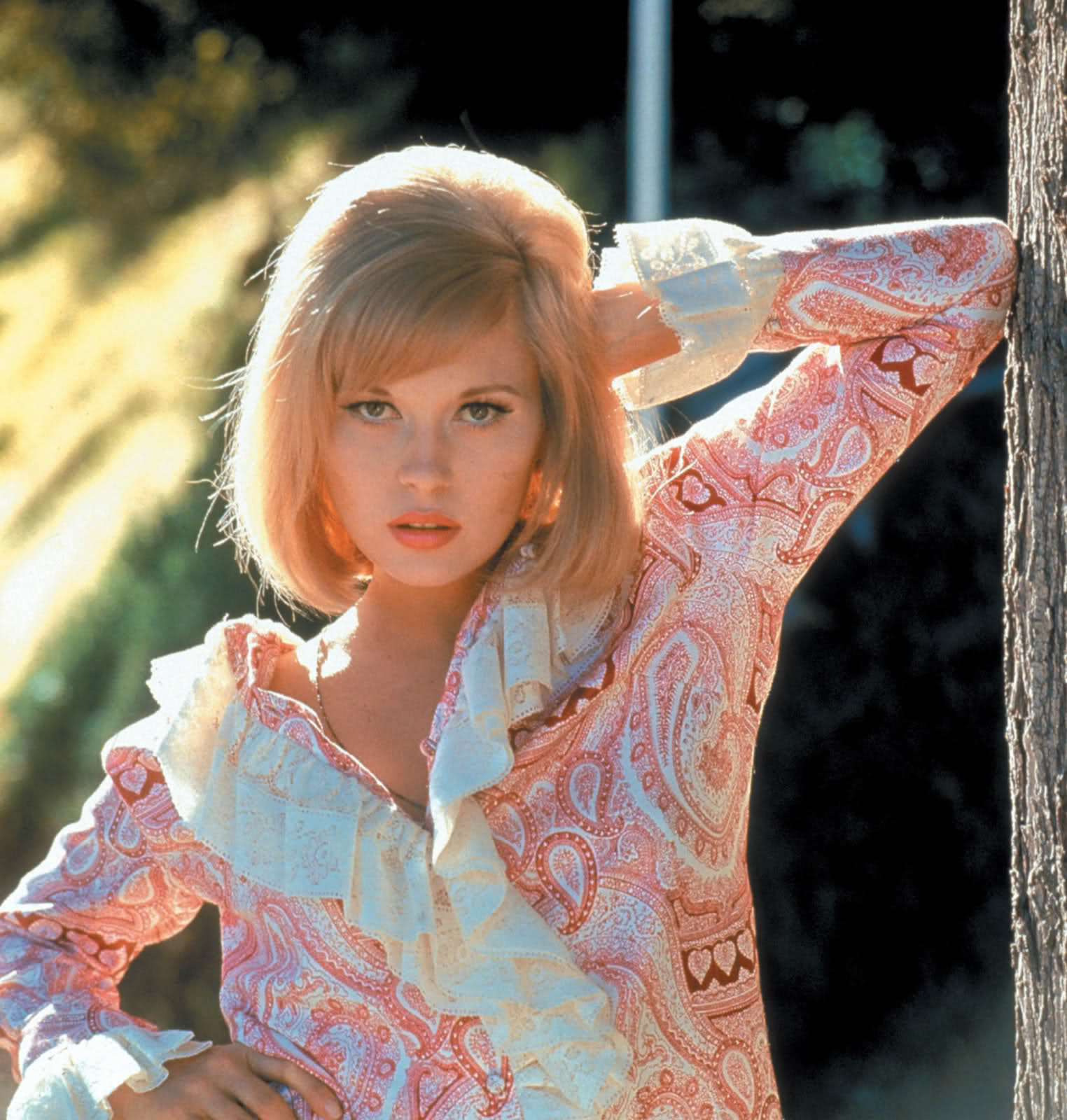 Faye Dunaway HD pictures