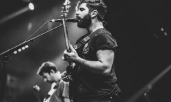 Foals HD pictures