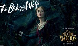 Into The Woods HD pictures