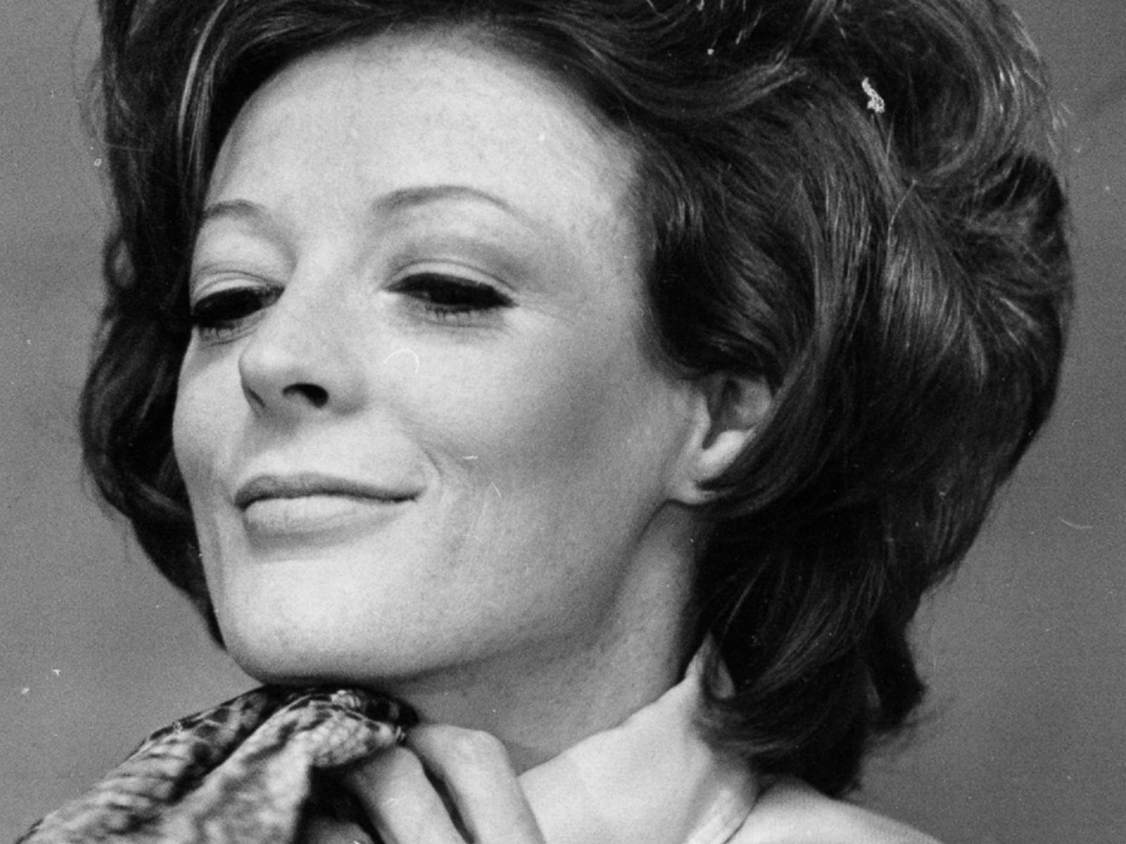 Maggie Smith HD pictures
