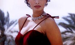 Sophia Loren HD pictures