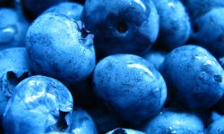Blueberry full hd wallpapers