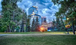 Calgary Full hd wallpapers