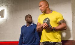 Central Intelligence Full hd wallpapers