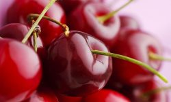 Cherry full hd wallpapers