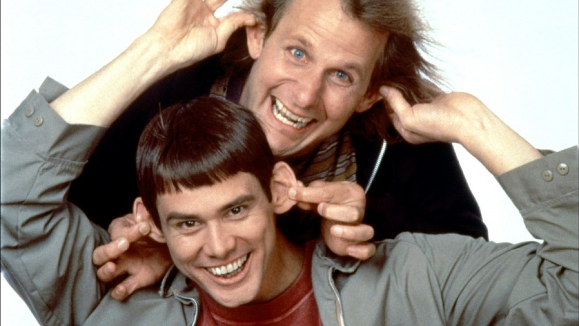Dumb And Dumber To full hd wallpapers