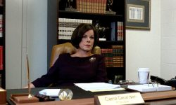 Marcia Gay Harden Full hd wallpapers