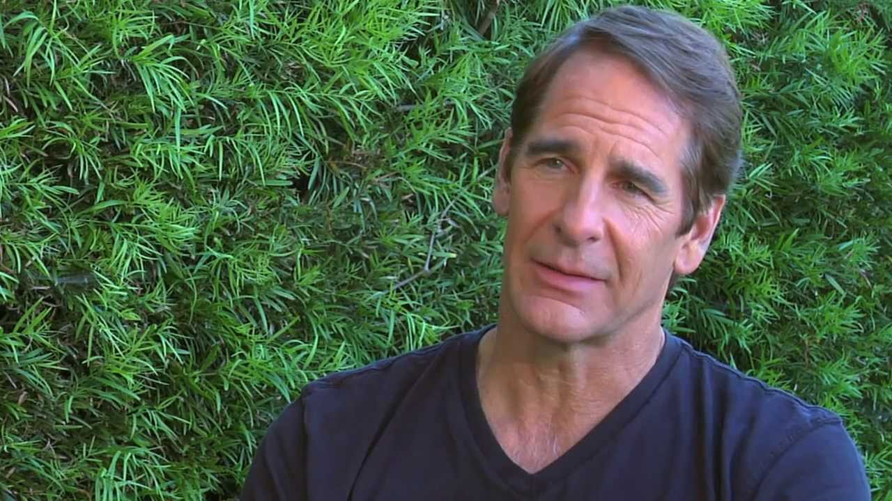 Scott Bakula Full hd wallpapers
