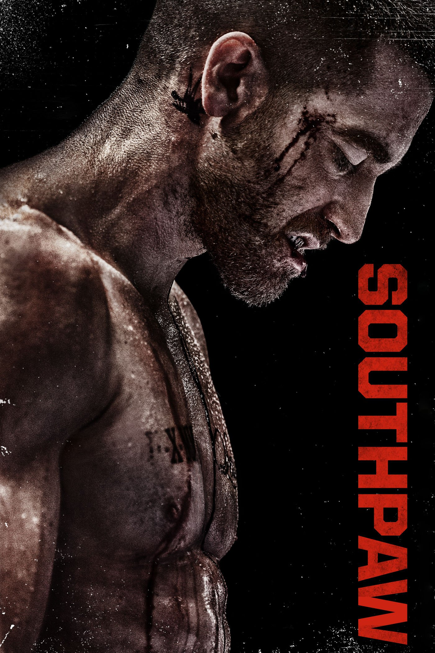 Southpaw Full hd wallpapers