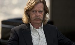 William Macy Full hd wallpapers