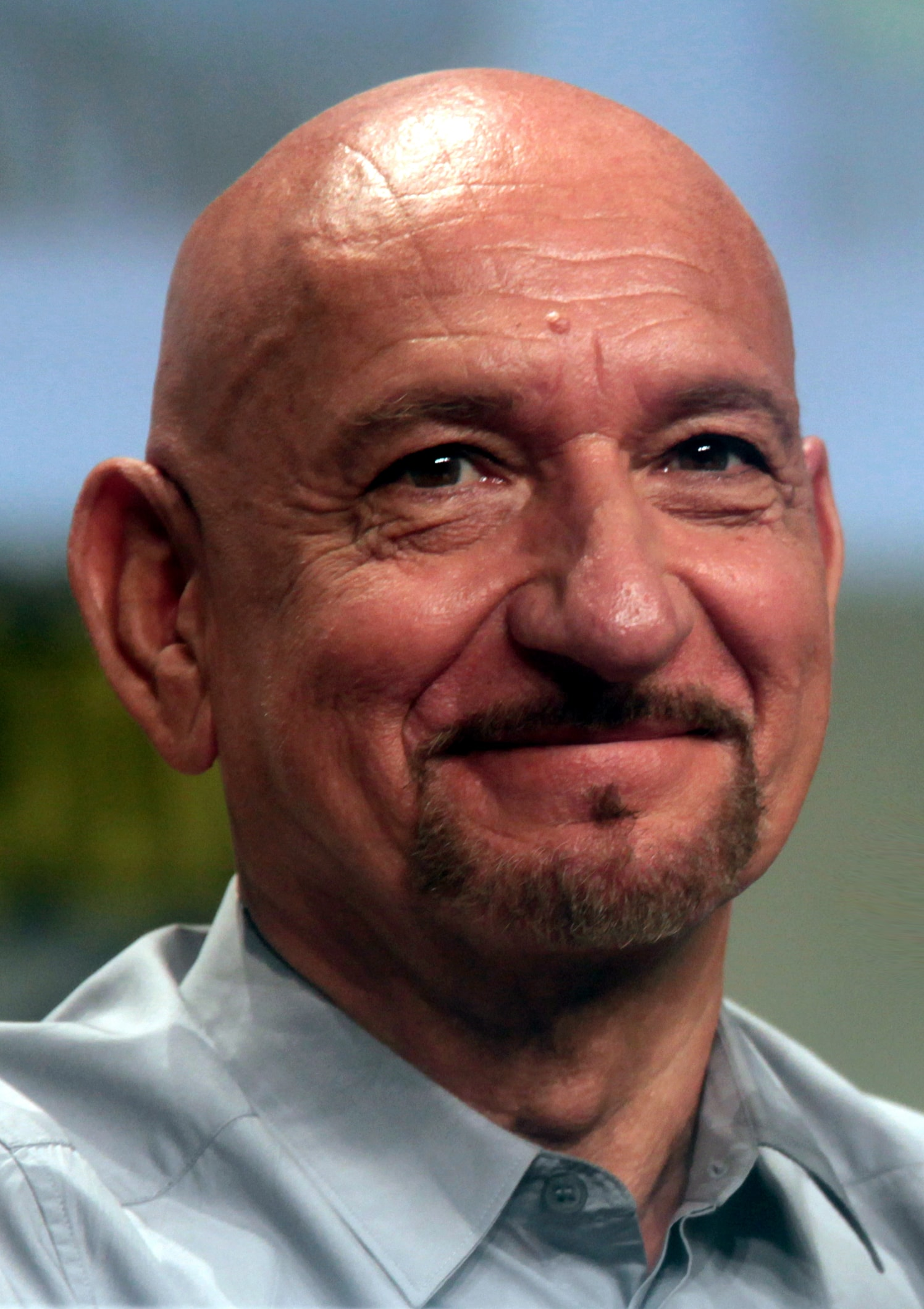 Ben Kingsley For mobile