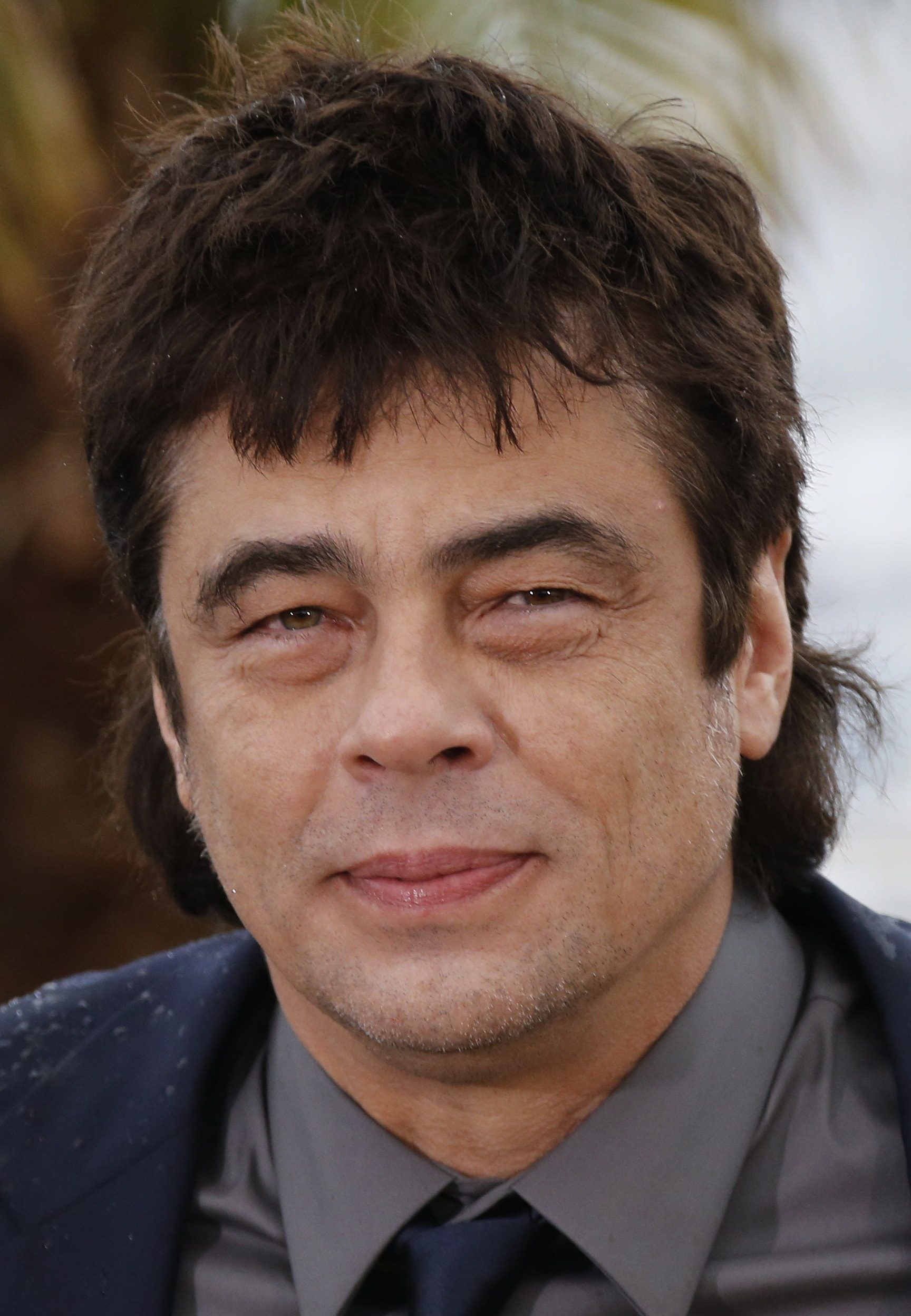 Benicio Del Toro HQ wallpapers