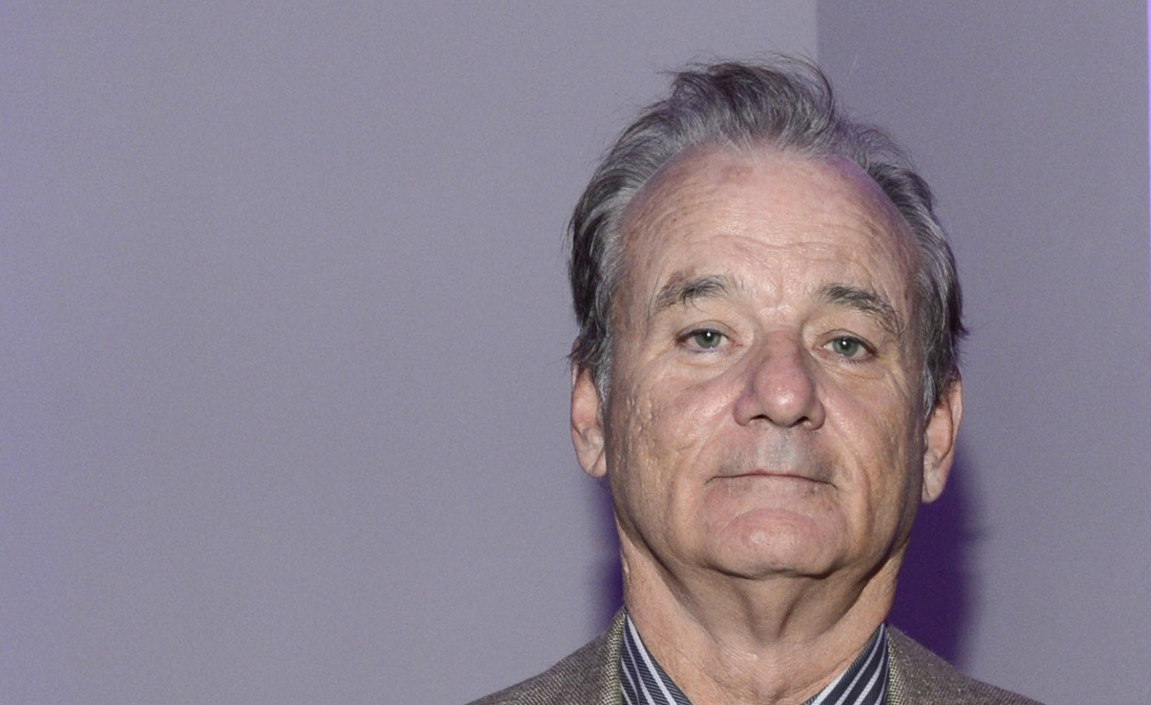 Bill Murray Widescreen for desktop