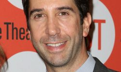 David Schwimmer For mobile