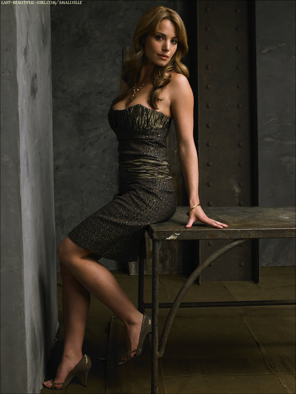 Erica Durance For mobile