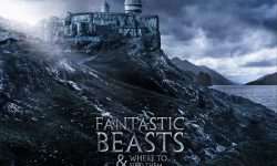 Fantastic Beasts and Where to Find Them full hd wallpapers