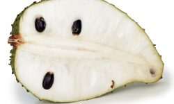 Soursop for mobile