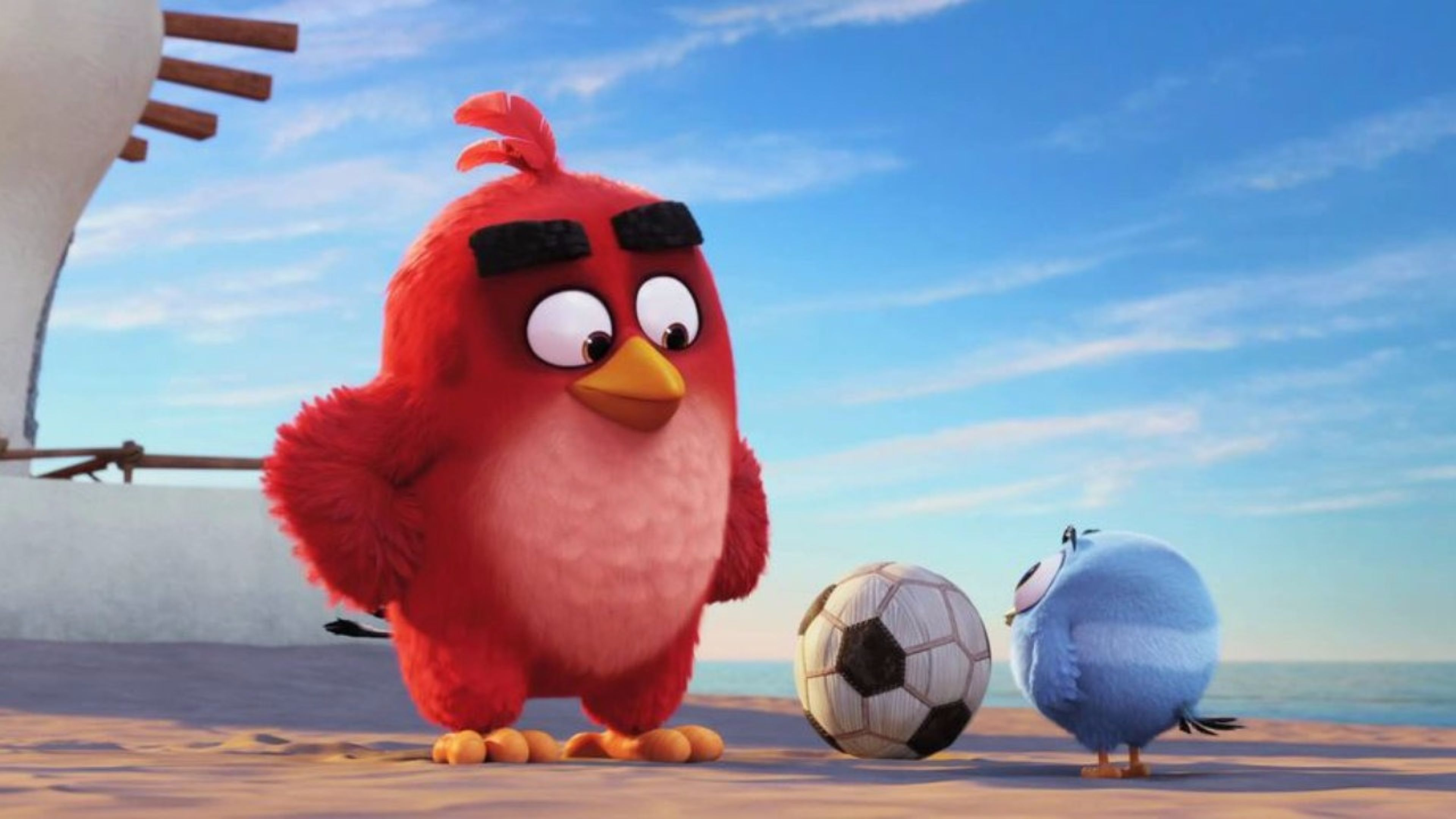 The Angry Birds Movie Full Hd Wallpapers