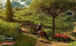 The Witcher 3 Wild Hunt - Blood and Wine For mobile