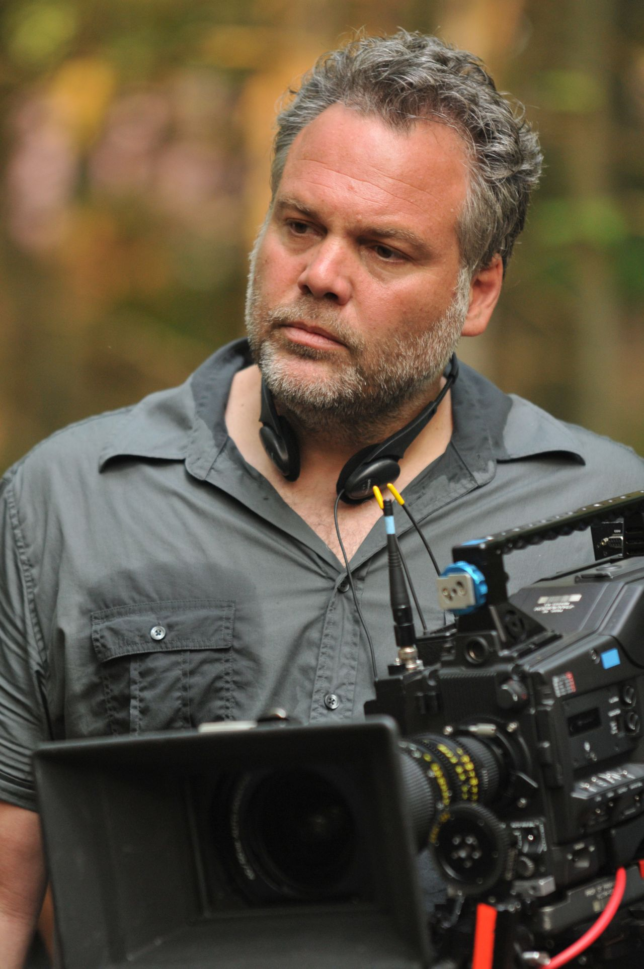 Vincent D Onofrio For mobile
