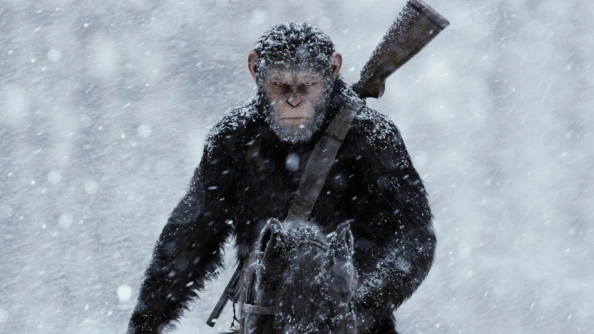 War For The Planet Of The Apes Hd Wallpapers 7wallpapers Net