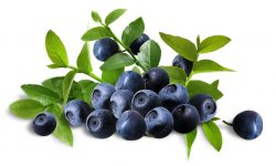 Blueberry widescreen for desktop