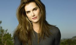 Brooke Shields Widescreen for desktop