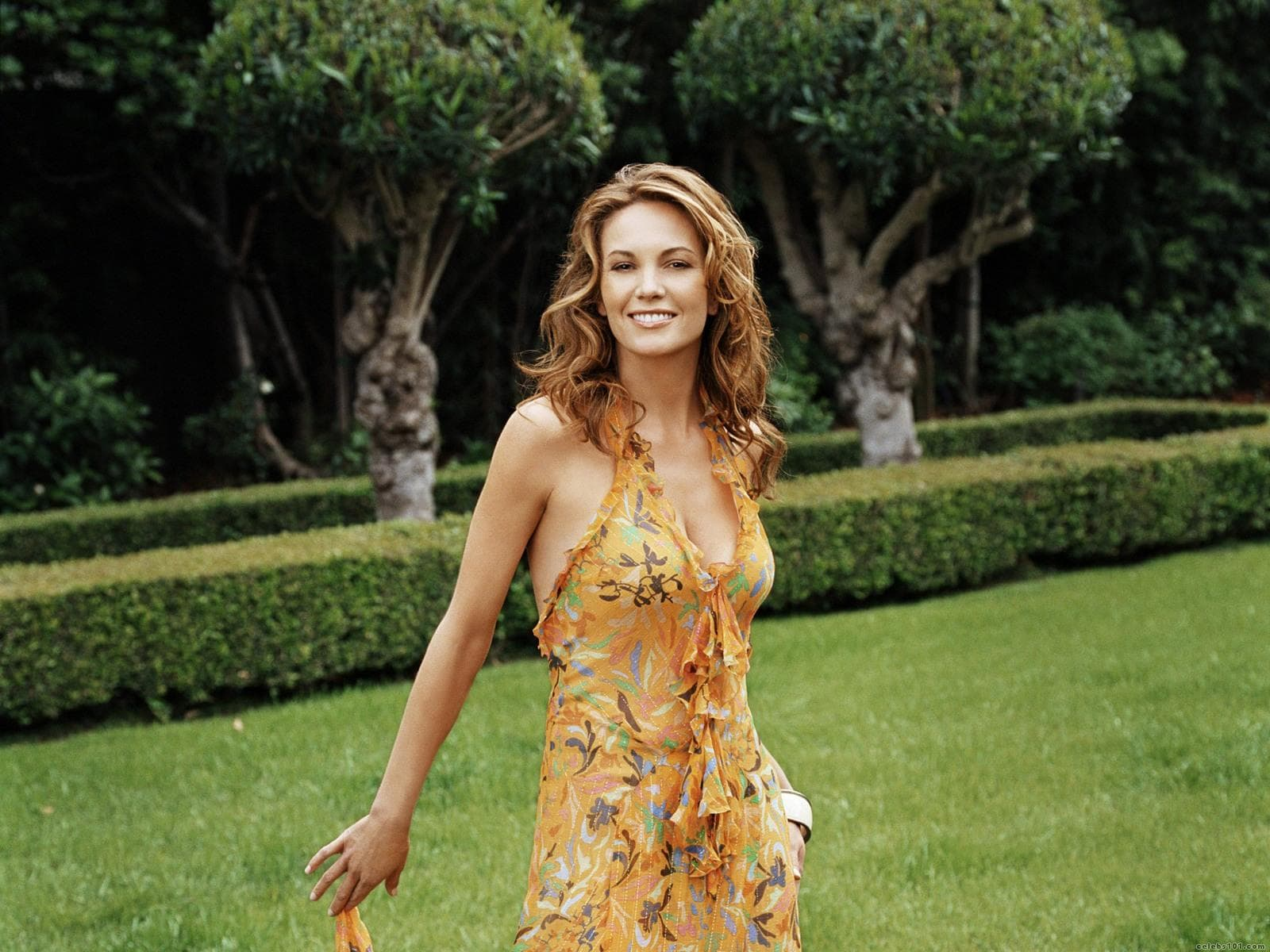 Diane Lane Widescreen for desktop
