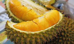 Durian widescreen for desktop