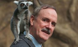 John Cleese Widescreen for desktop