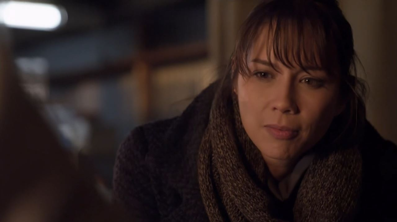 Lexa Doig Widescreen for desktop