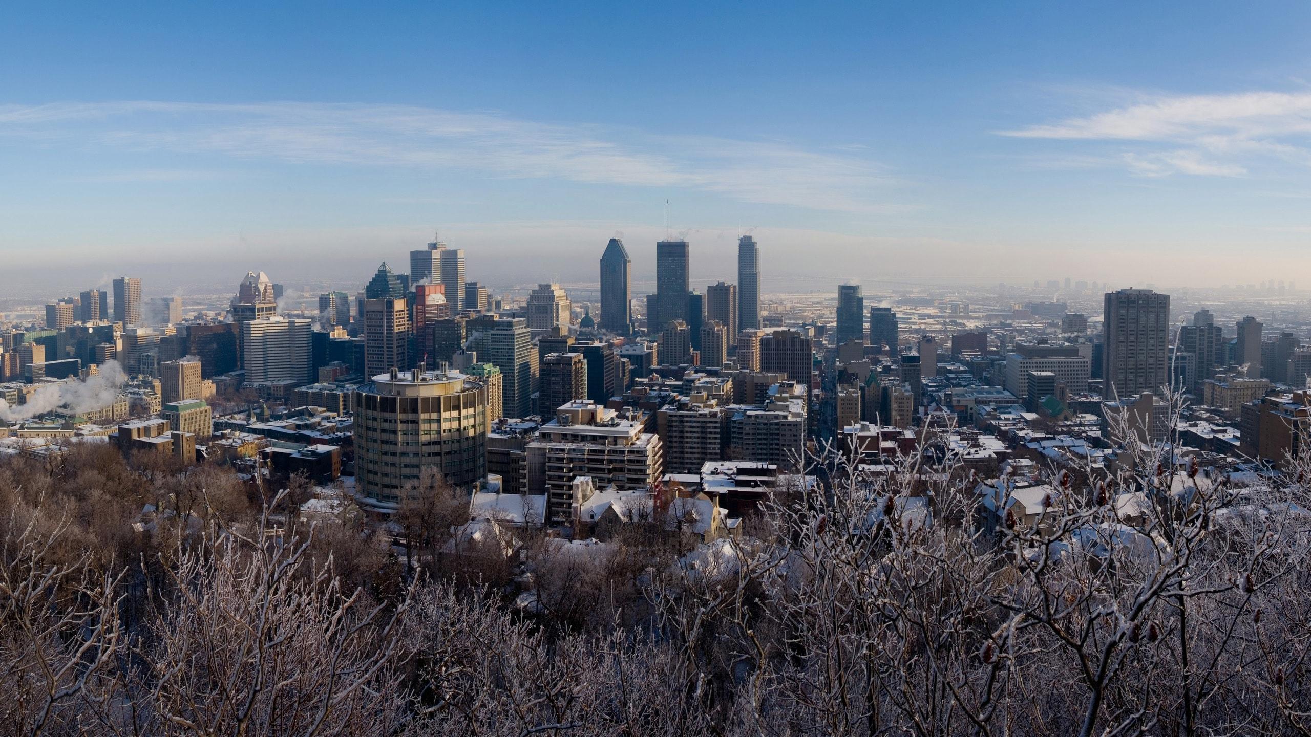 Montreal Widescreen for desktop