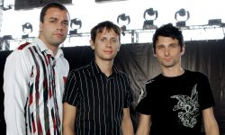 Muse Widescreen for desktop