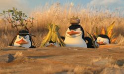 Penguins Of Madagascar Backgrounds